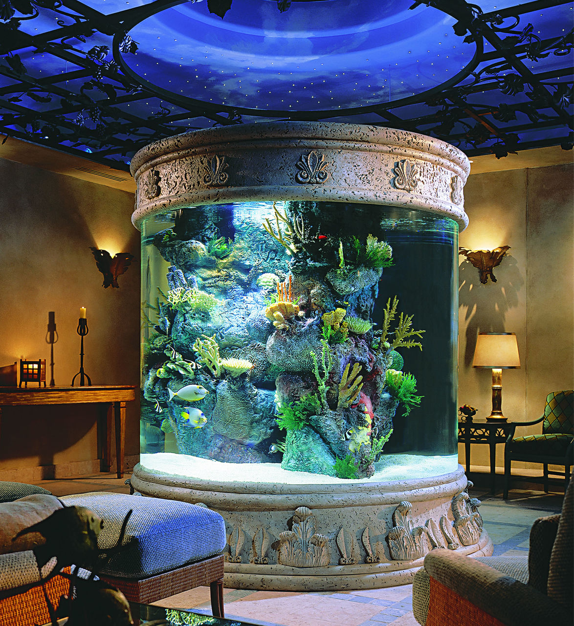 По программы аквариумов дизайну